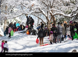 New Yorkers sledding in Central Park