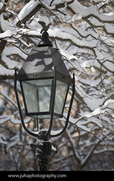 A street lamp in City Hall Park