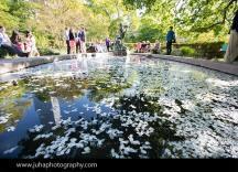 English Garden In Central Park