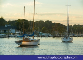 sailboat at the Greenwich harbor